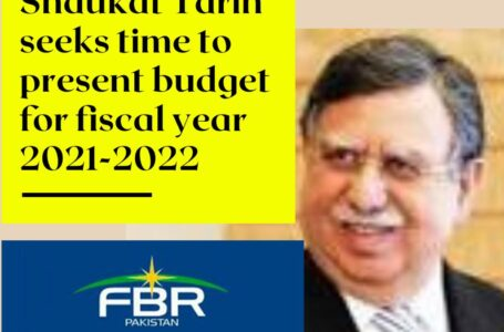 Shaukat Tarin seeks time to present budget for Fiscal Year 2021-2022