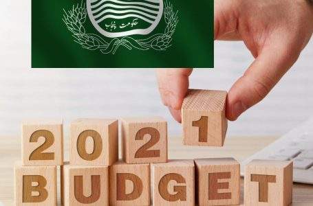 Proposals for development budget of Punjab for next financial year