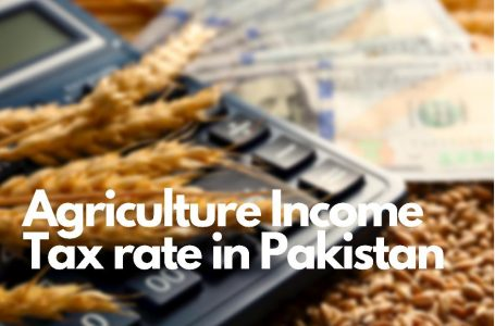 Agriculture Income Tax Rate in Punjab Pakistan 2020-2021